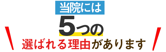 選ばれる5つの理由