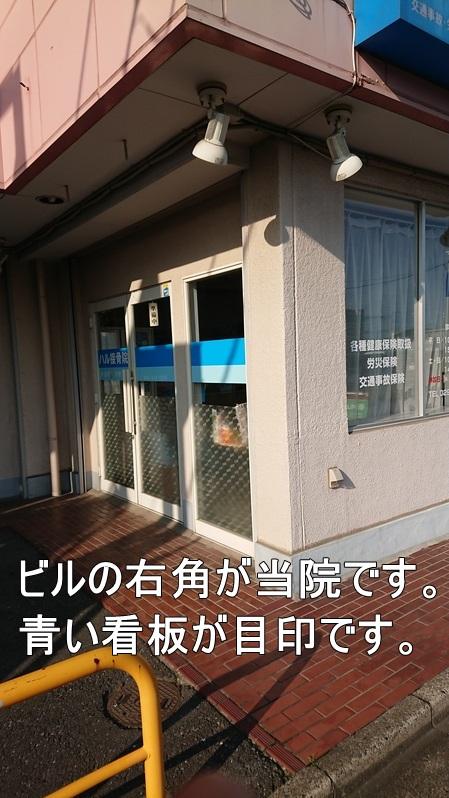 そのビルの一階右端が当院になります。青い看板が目印です。